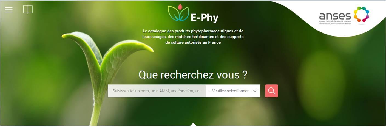 Le nouveau site E-phy est en ligne!