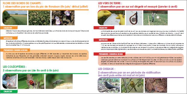 Surveillance Biologique du Territoire: suivi des indicateurs de biodiversité en milieu agricole en Picardie