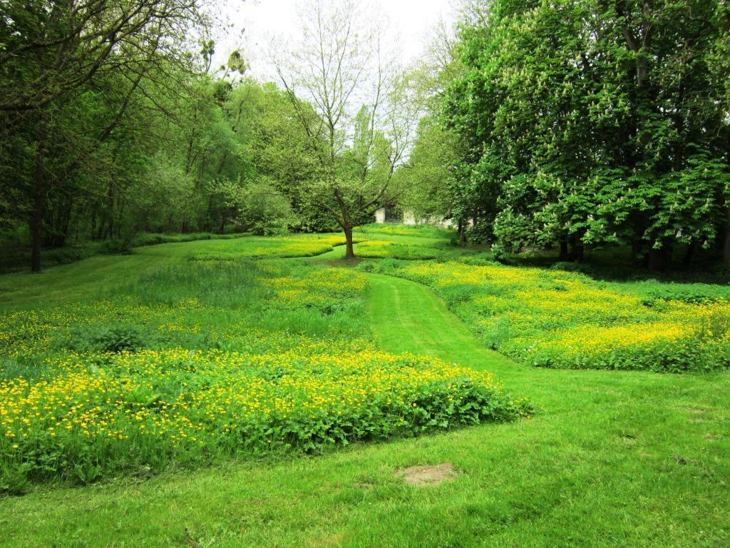 L'art de jardiner sans produits phytosanitaires