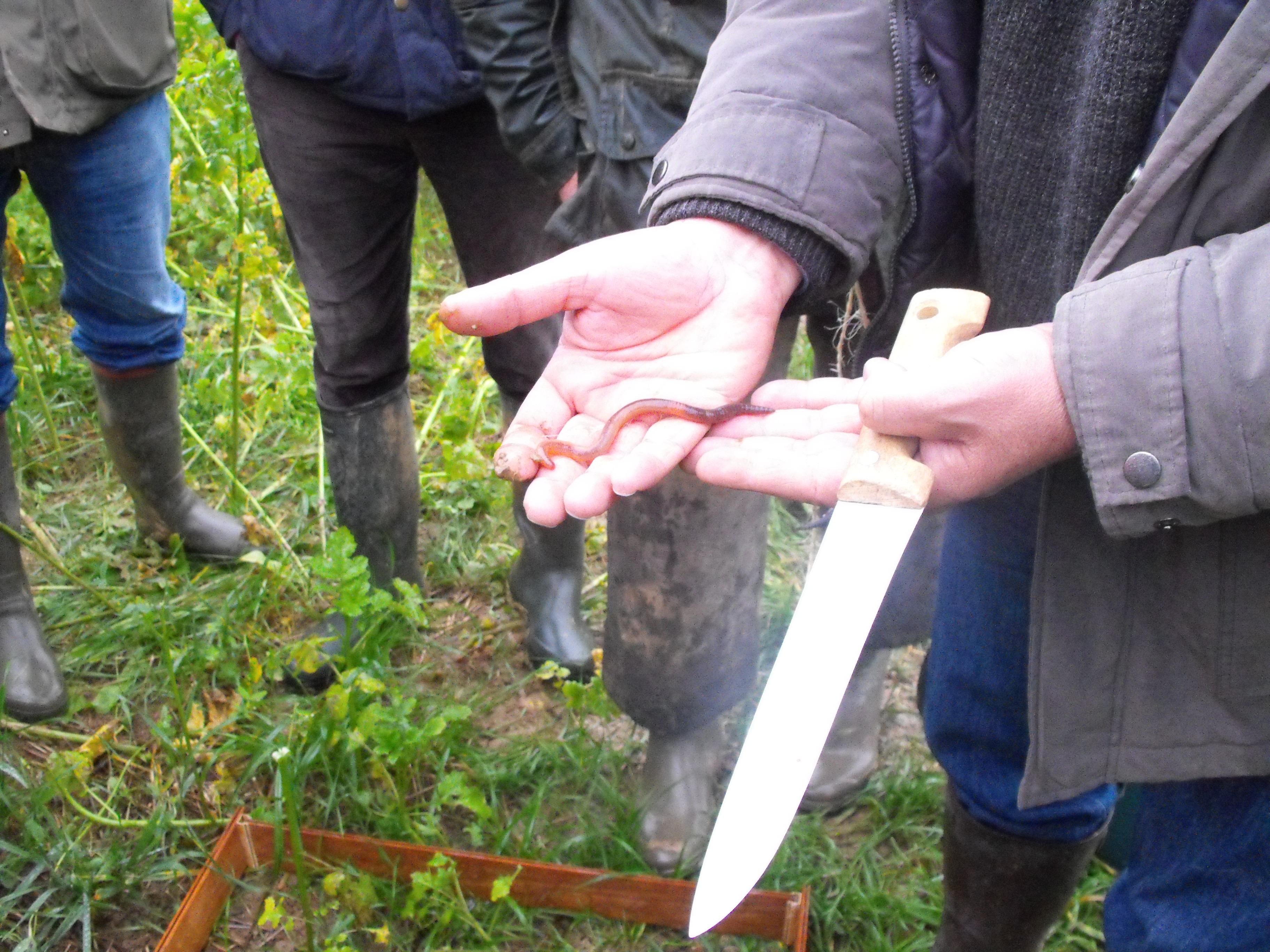 Présentation du réseau des fermes DEPHY de l'Aisne