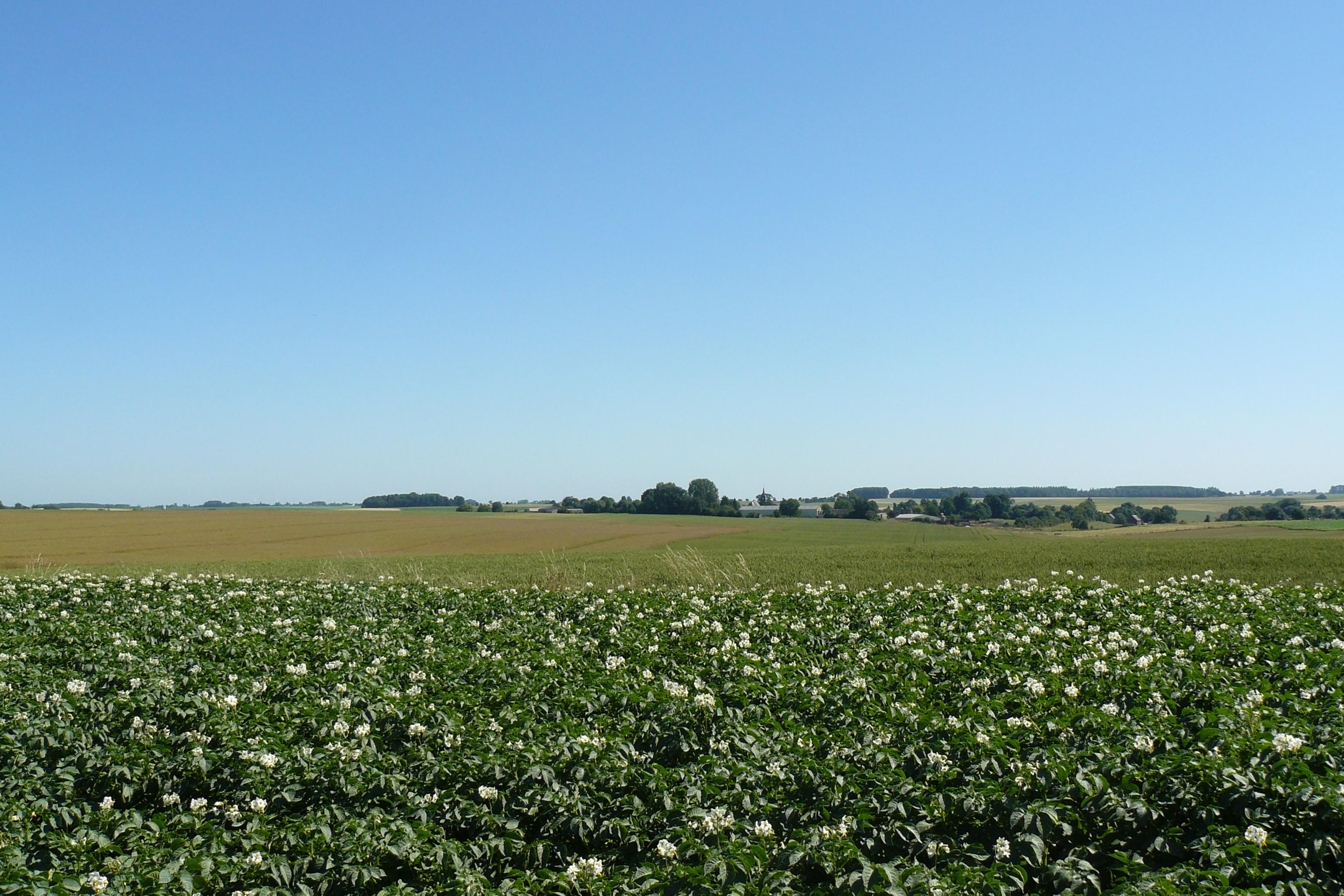 Retrait des herbicides à base de glufosinate