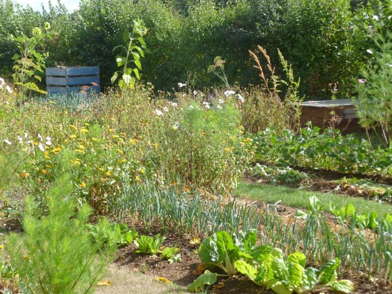 Lettre d'information «Jardins au naturel» pour les jardiniers