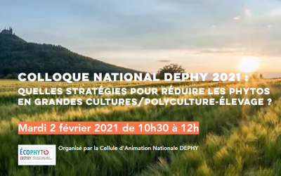 Colloque national DEPHY 2021, le mardi 2 février
