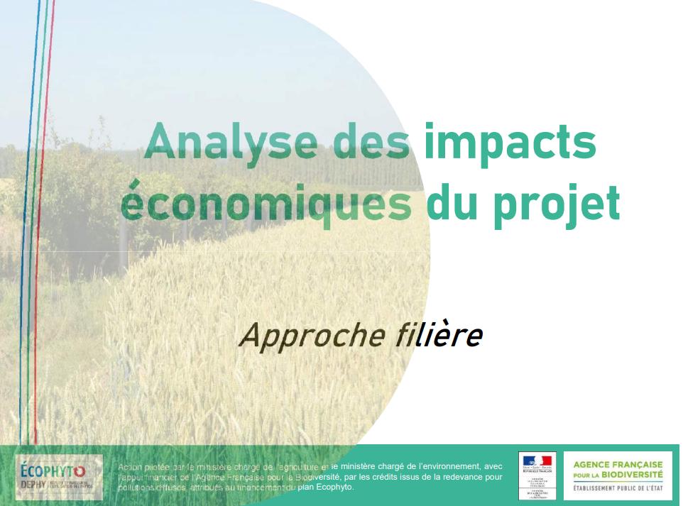 Analyse des impacts économiques du projet – approche filière